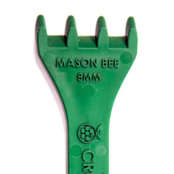 Cocoon Comb mason bee end