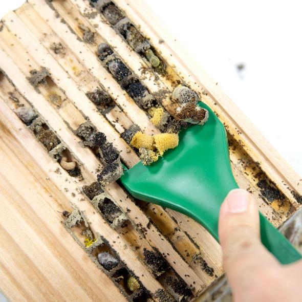 Cocoon Comb in 8mm mason bee wood tray