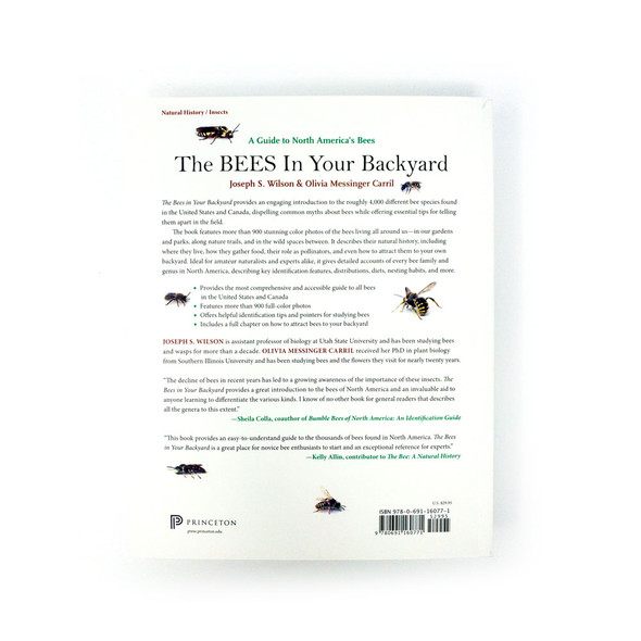 Bees in backyard back cover