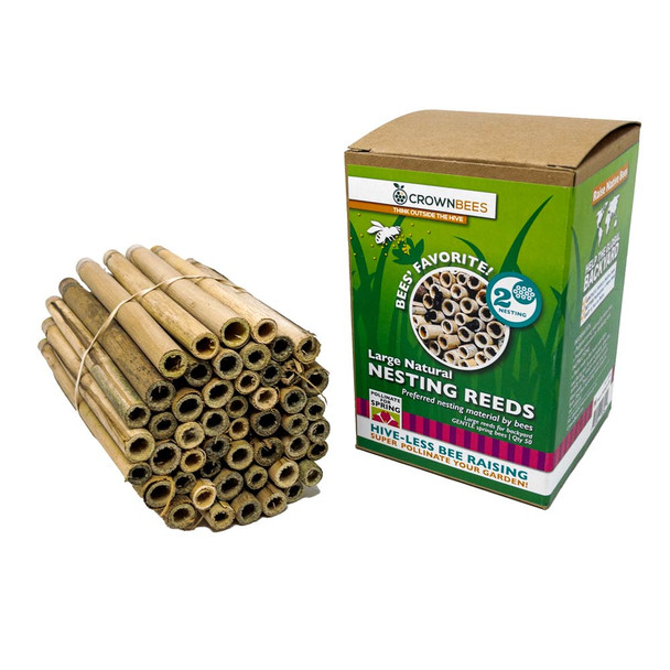 spring natural reeds for mason bees Crown Bees