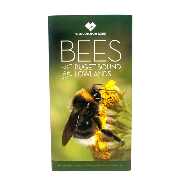 Puget Sound lowlands field guide to bees
