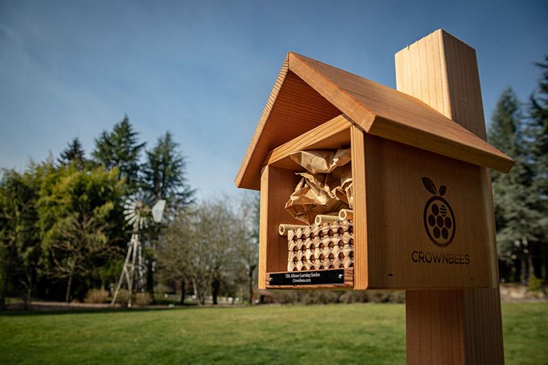 bee-house-windmill.jpg
