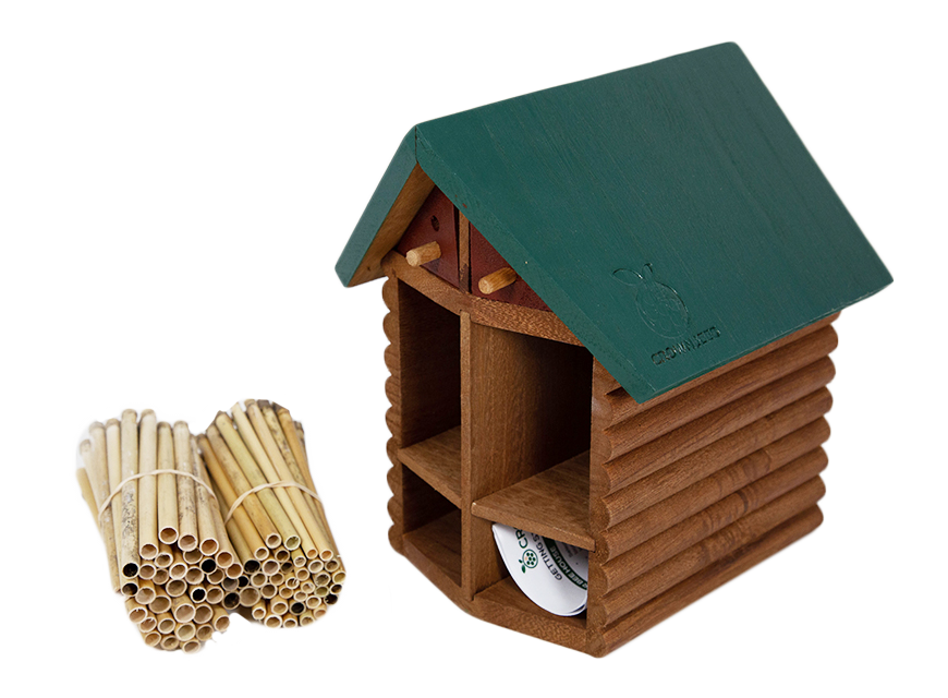 Cabin Dual Season Reeds