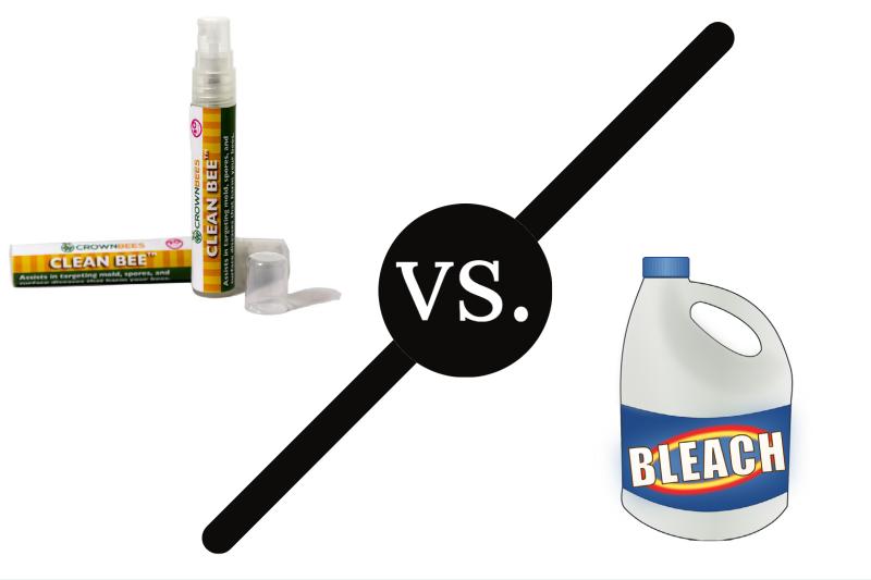 CleanBee vs Bleach