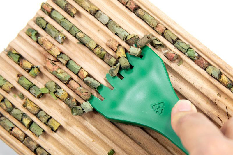 Using cocoon comb to harvest leafcutters