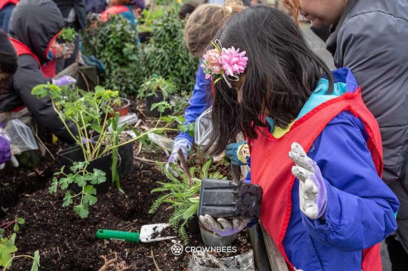 Children Gardening in Seattle's UpGarden