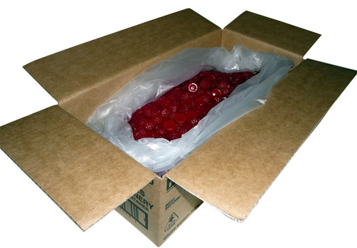 fresha raspberries 10kg