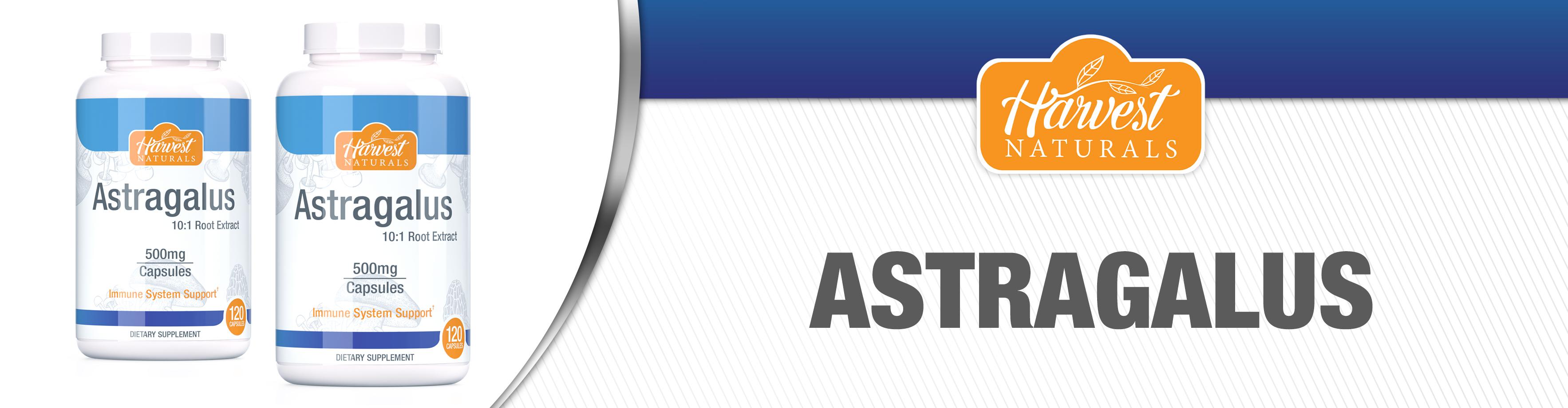 astragulus-capsules-10-21.jpg
