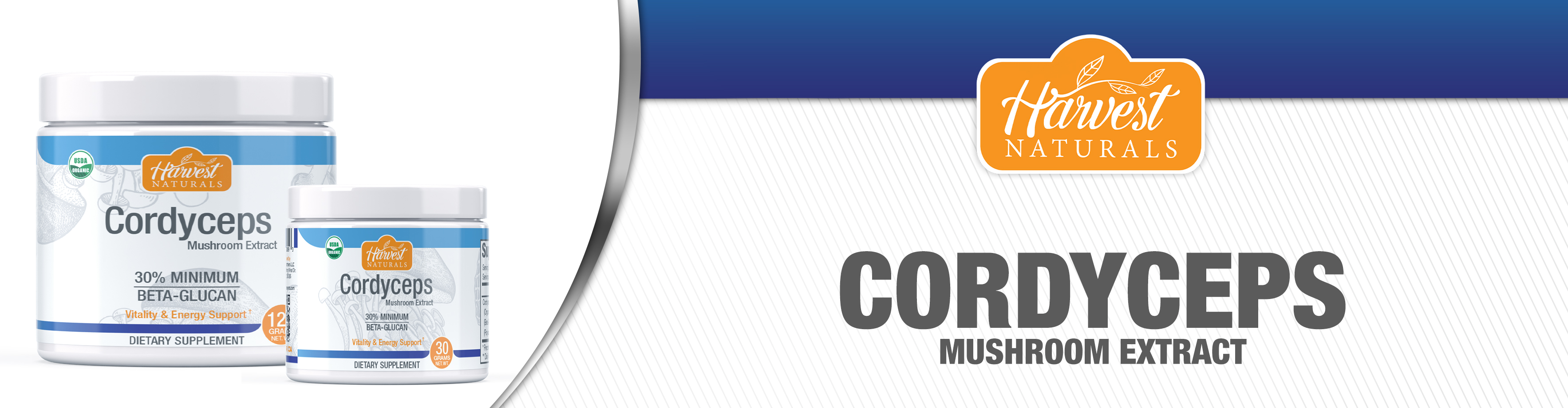 cordyceps-mushroom-powder-10-21.jpg