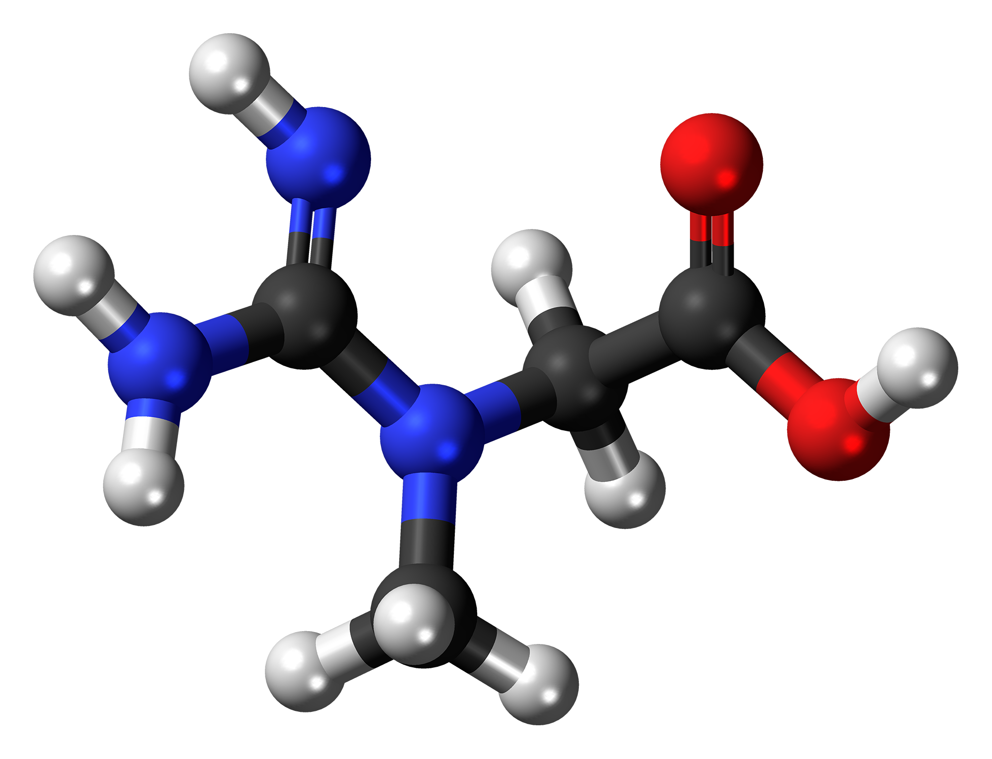 hard-rhino-creatine-molecule-ball.png