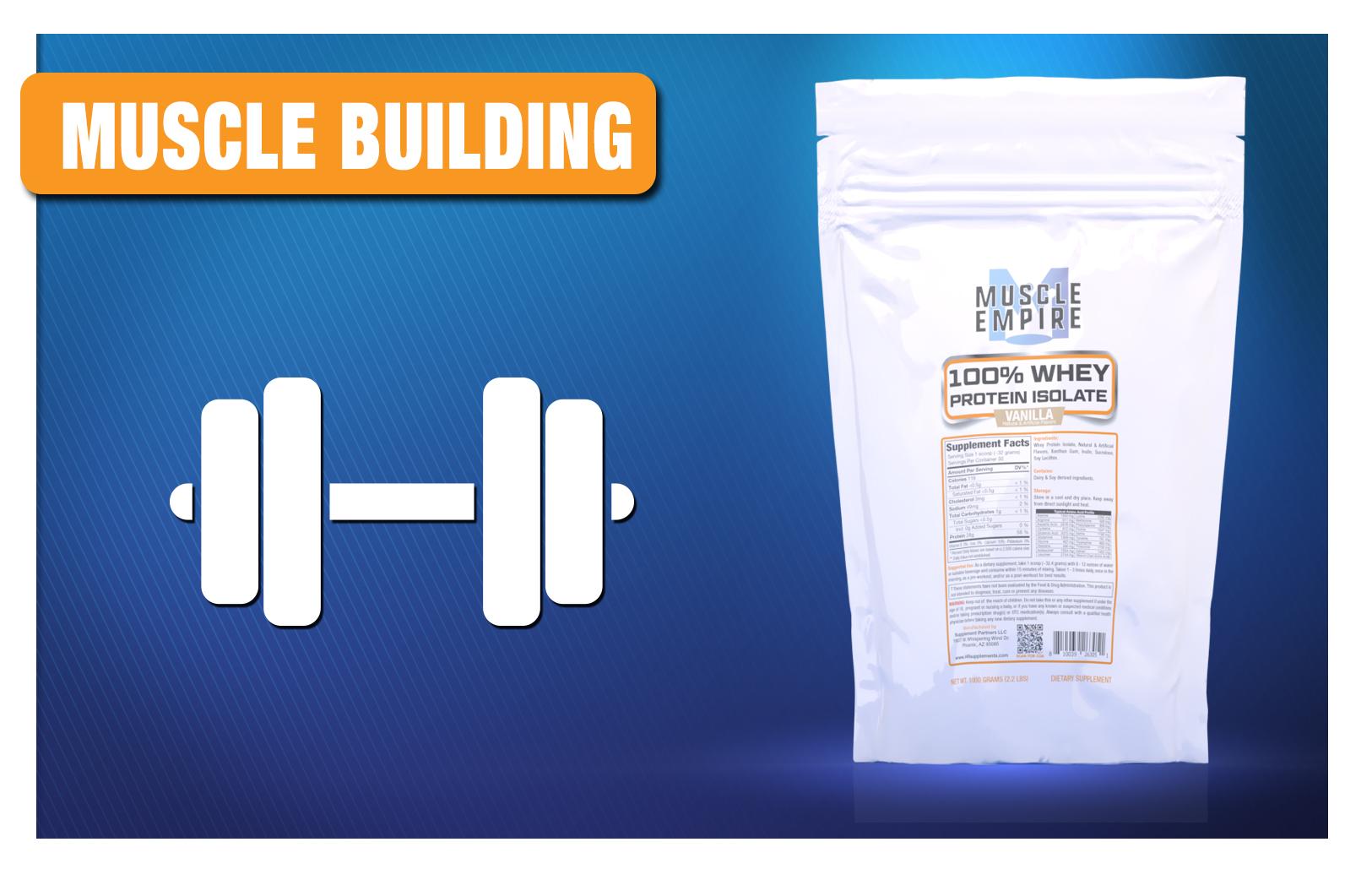 muscle-building2021.jpg