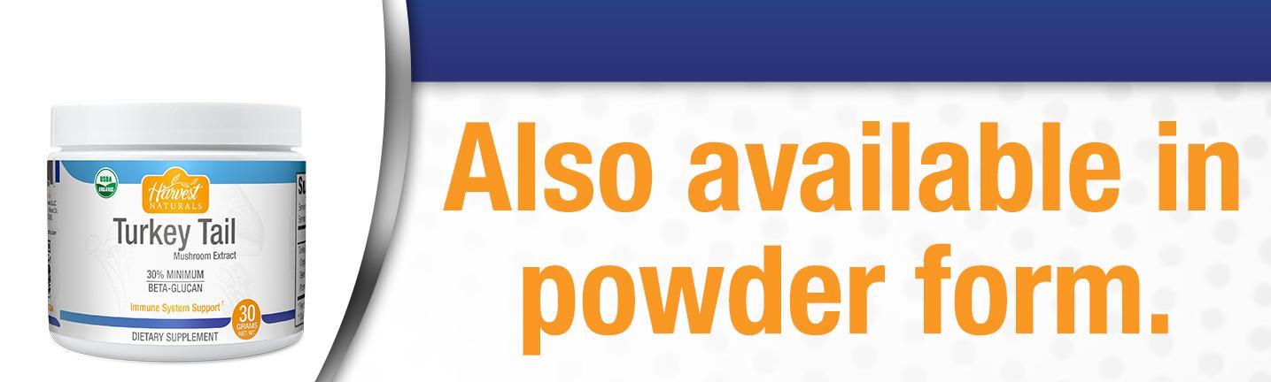 turkey-tail-powder-also.jpg