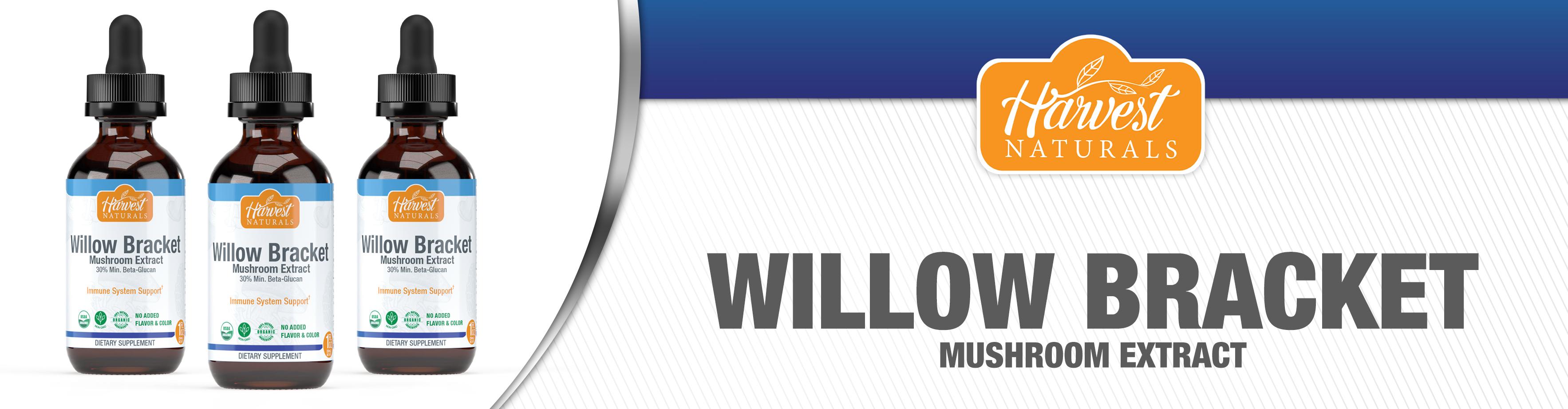 willow-bracket-mushroom-1-fl-oz-10-21.jpg