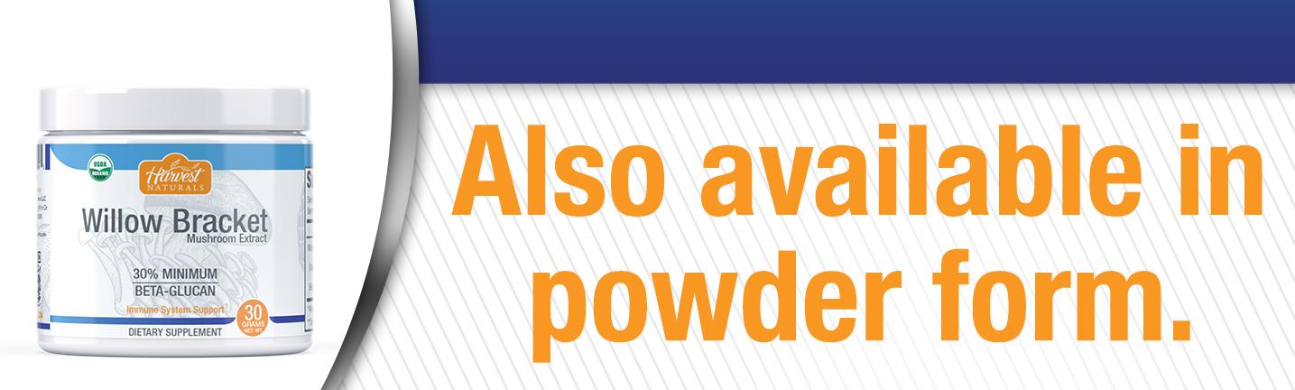 willow-bracket-powder-also-10-21.jpg