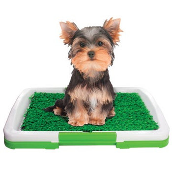 Wholesale Indoor Turf Potty Training Tray for Dogs