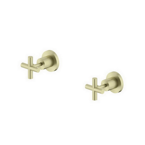 X Plus Wall Top Assemblies Brushed Gold [254051]