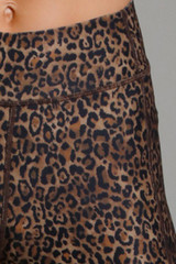 Perfect Leopard Print Close-Up
