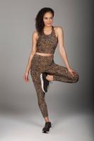 High Waist Wild Leopard Print Top and Legging Set