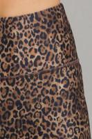 Perfect Leopard Print Close-Up