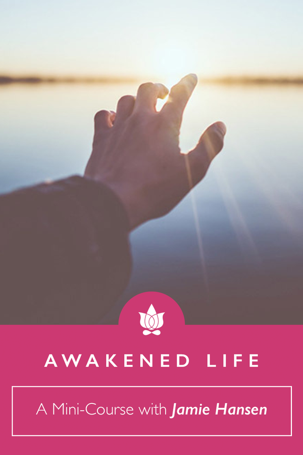 FREE self-paced online mini-course called Awakened Life Mini-Course from Jamie Hansen