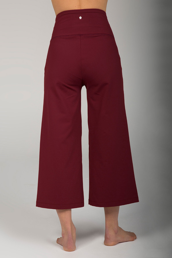 Earthy Red Wide Leg Cropped Pant back view