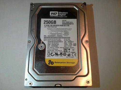 Western Digital 750GB Hot-Plug SATA 1.5GB/s Hard Drive 7200 RPM 3.5-inch form factor 1.0 inch WD2503ABYX