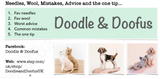 Needles, Wool, Mistakes, Advice and the One Tip - by Jodie from Doodle & Doofus