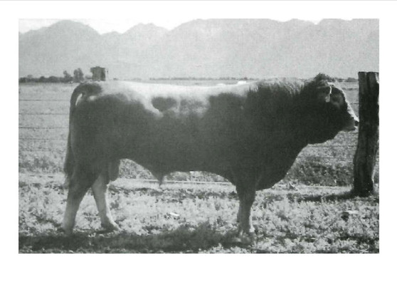 Polled Govenor