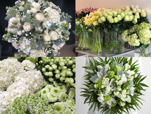Florist Choice Same Day - White