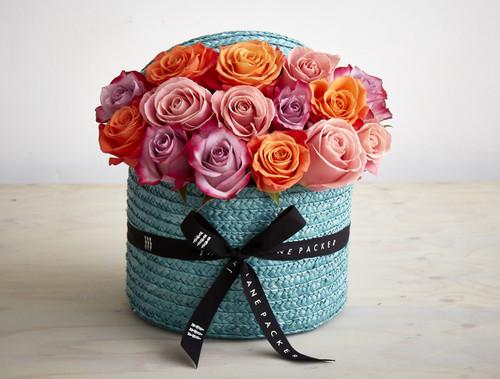 Grand Blue Rose