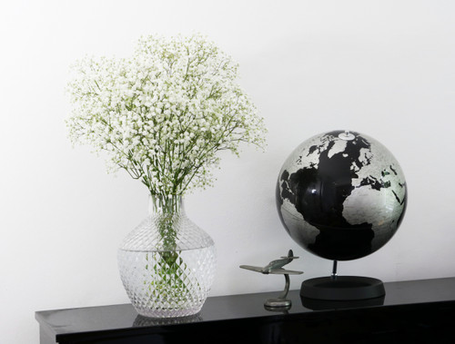 Gypsophila Box