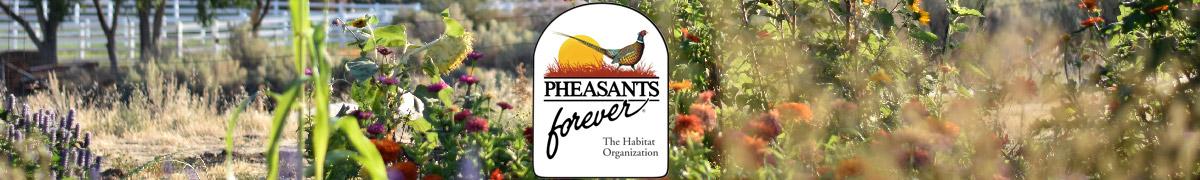 pheasants-forever-green-3-collection-storefront-banner-logos-1200x180.jpg