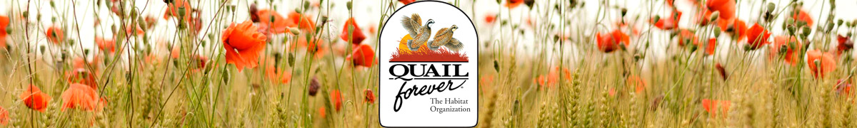 quail-forever-green-3-collection-storefront-banner-logos-1200x180.jpg