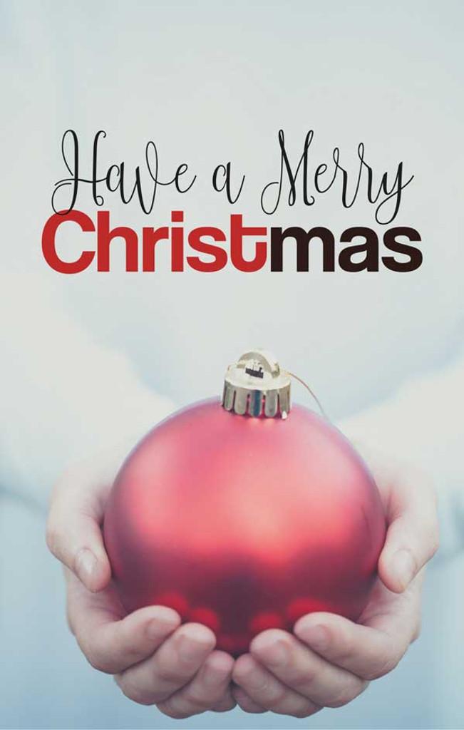 Have a Merry Christmas-Big Bulb