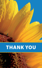 Thank You-Real Sun Flower