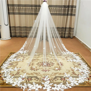 Lace Applique Single Layer 5m Cathedral Wedding Veil