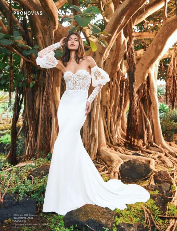 Masazir Wedding Gown by Pronovias Barcelona Bridal