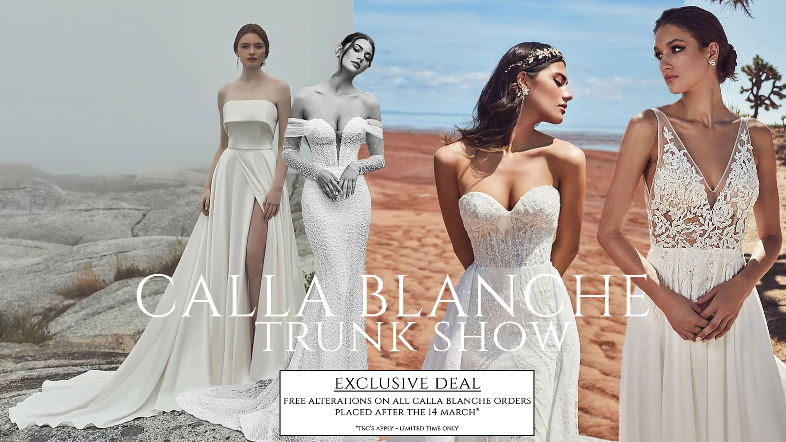 cb-trunk-show-banner-p2-.png