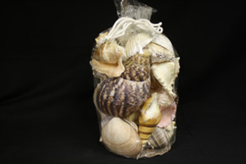 Extra Large Designer Shell Gift Bag