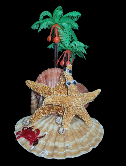 Double Star Palm Arrangement
