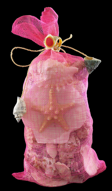 Medium Sinamay Shell Bag