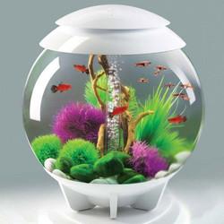 biOrb HALO 8-Gallon Moonlight White MCR Aquarium