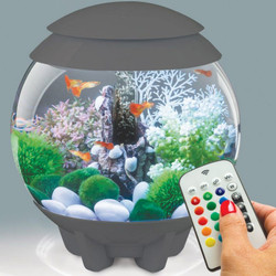 biOrb HALO 8-Gallon Grey MCR Aquarium