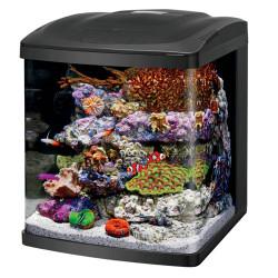 Coralife NEW STYLE Size 16 LED BioCube Aquarium