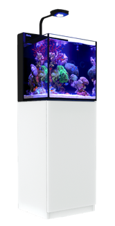Red Sea Max Nano White 20-Gallon All-in-One Saltwater Aquarium