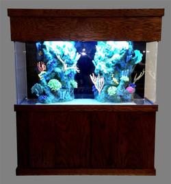 """Tsunami 460-Gallon 72""""Lx36""""Wx48""""H Rectangular Acrylic Aquarium Setup"""