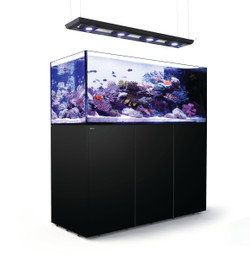 Red Sea Reefer Deluxe Peninsula 650 Black
