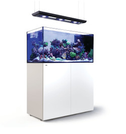 Red Sea Reefer Deluxe Peninsula 500 White