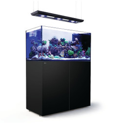Red Sea Reefer Deluxe Peninsula 500 Black