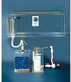 "Clear-for-Life Deluxe 50-Gallon 36""Lx15""Wx20""H Rectangular Acrylic Aquarium"